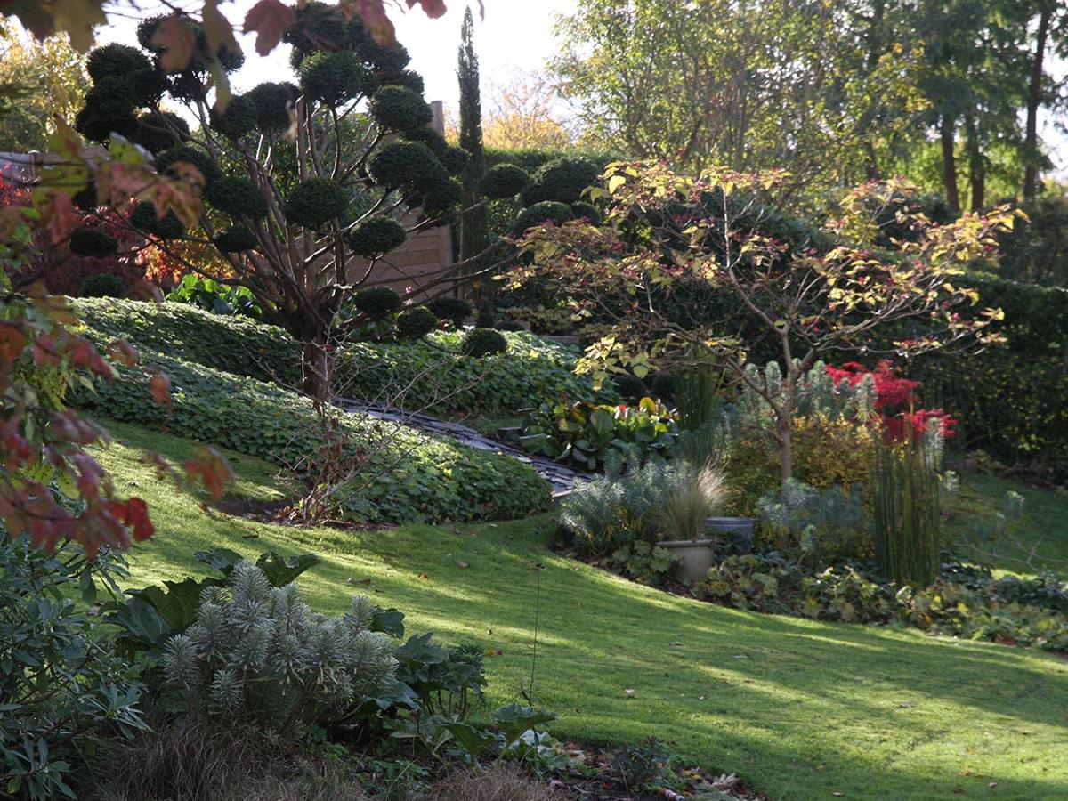 Cr ation de terrasse am nagement d 39 un jardin au bois fleuri - Amenagement d un jardin ...